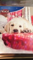 Adventskalender Hund - Adventskalender Hund