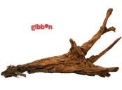 Driftwood-rot