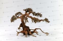 Aqua Bonsai träd - Aqua Bonsai träd M