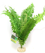Plastväxt Fougere Vivarium
