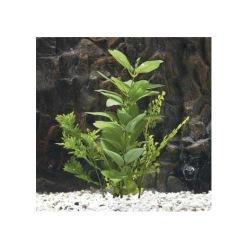 Plastväxt hygrophila 23cm - Plastväxt hygrophila 23cm