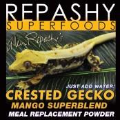 Crested gecko mango