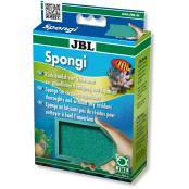Spongi Svamp