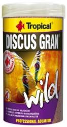 DISCUS GRAN WILD - DISCUS GRAN WILD