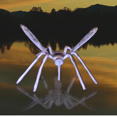 Klickar ni på fotografiet så visar Leif hur denna mygga kommer till.