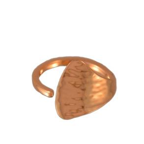 Stora Sjöfallet ring