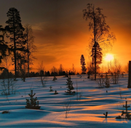 Winter in Jokkmokk