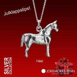 Häst -