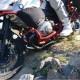 Motorskyddsbåge - R1200 GS (-2012)