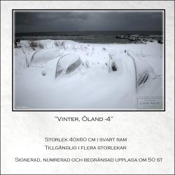 Vinter, Öland-4