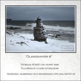 Vinter, Öland-6
