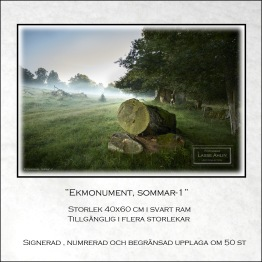 Ekmonument sommar-1