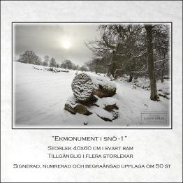 Ekmonument i snö-1