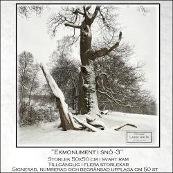 Ekmonument i snö-3