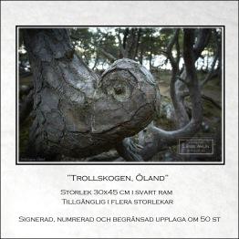 Trollskogen, Öland