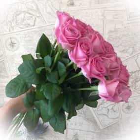 Ljuvligt rosa rosor