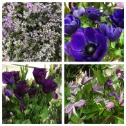 Floristens val -Blå