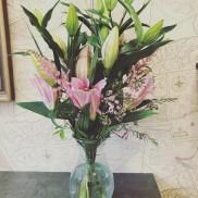 Ståtliga liljor