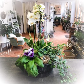 Stor plantering elegant