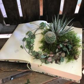Plantering i en bok