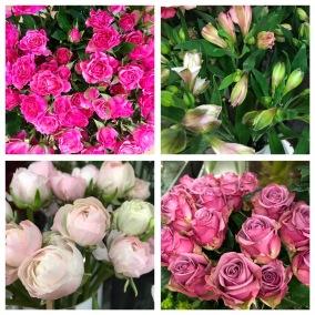 Floristens val -Rosa