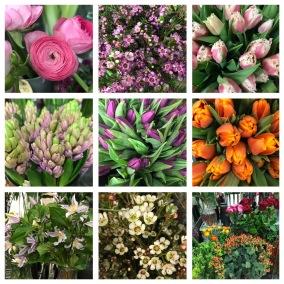 Floristens val -färgglad