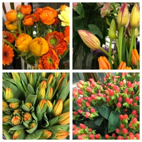 Floristens val -Orange