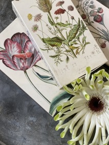 Tändsticksask med botaniska motiv
