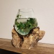 Handgjord glaskupa på trädrot - Handgjord glaskupa på trädrot stor