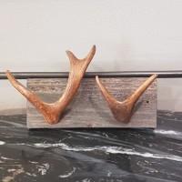 Renhornskrokar
