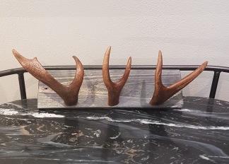 Renhornskrokar -
