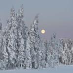 Vinter Dalarna 4