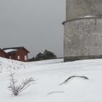Vinter Morups tånge