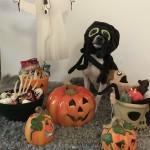 Glad Hallowen önskar Rippåsens Läkerol, foto Martina Ehnar