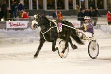 V75-4 Myr Faksen Målgång. Foto: Ola Westerberg/KANAL75