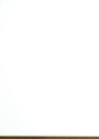 White Highgloss - pristillägg +50%