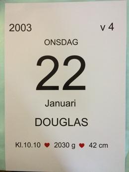 Datumposter födelse