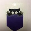 Katt i ficka