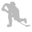 Reflexer - Hockeyspelare