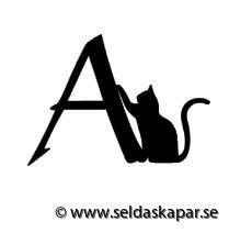 katt a