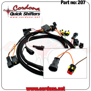 207 - Wiring Harness Only for MV Agusta 2 coils - 207 - MV Agusta 2 coils