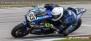 Yamaha R1, R1M, YEC 2018-    Quickshifter - Blipper