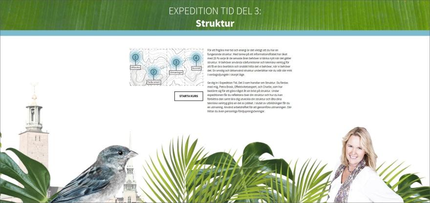 Struktur, e-utbildning Expedition Tid, PB & Partners