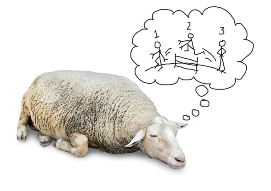 Tips & Inspiration Effektivitet, Sömnproblem, PB & Partners