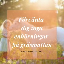 Förvänta dig inga enhörningar på gräsmattan, www.petrabraskblogg.se