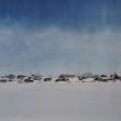 Kaalasjärvi
