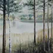 Vid sjön. Älvsbyn