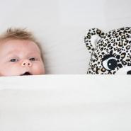 Babyporträtt Halmstad