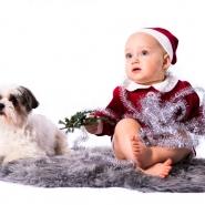 julfoto barn halmstad