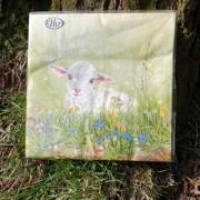 Servetter sött lamm